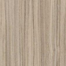 Avignon walnut